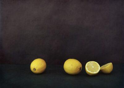 02AChassary-Citrons