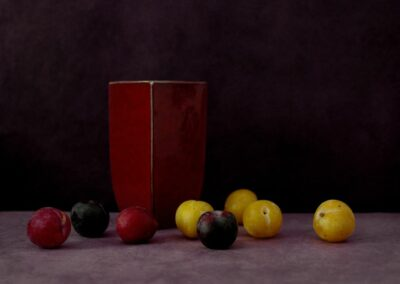 11AChassary-Prunes