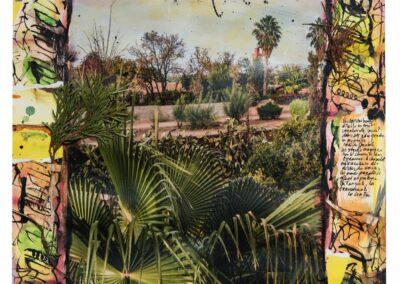 jardin-maroc©adelap