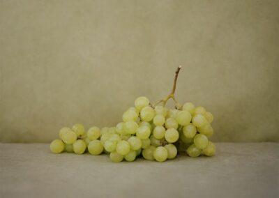 10AChassary-Raisins