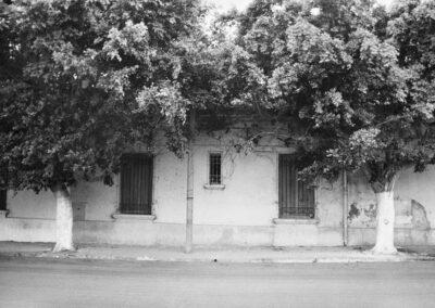 Avenue-Cherfaoui-Aicha-3891